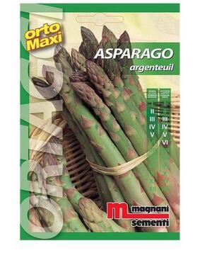 Sementi di Asparago Argenteuil