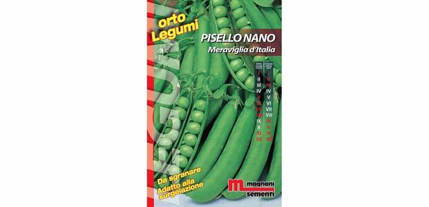 Sementi di Piselllo Nano Meraviglia d'Italia