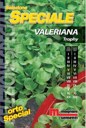 Sementi di Valeriana Trophy