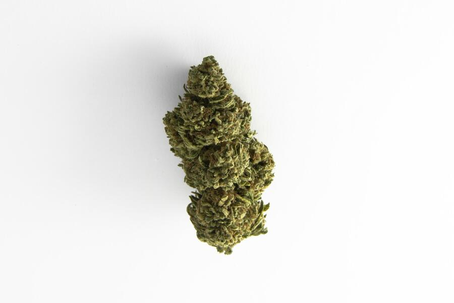 FIORE DI CANAPA OUTDOOR FIRST LADY ROOTS (THC 0,34 - CBD 9) 1-3-5-10-25-50 GR.