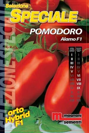 Sementi di Pomodoro Alamo