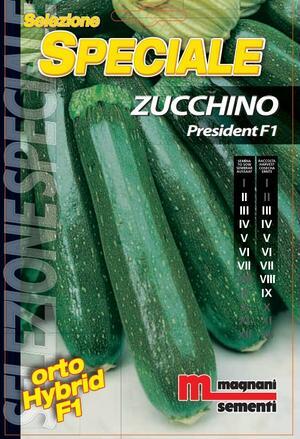 Sementi di Zucchino President