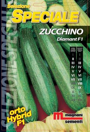 Sementi di Zucchino Diamant