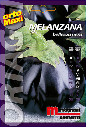 Sementi di Melanzana Bellezza Nera