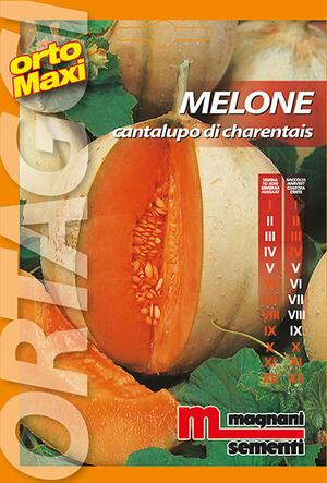 Sementi di Melone Cantalupo