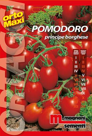 Sementi di Pomodoro Principe Borghese