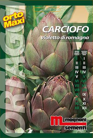 Sementi di Carciofo Violetto di Romagna