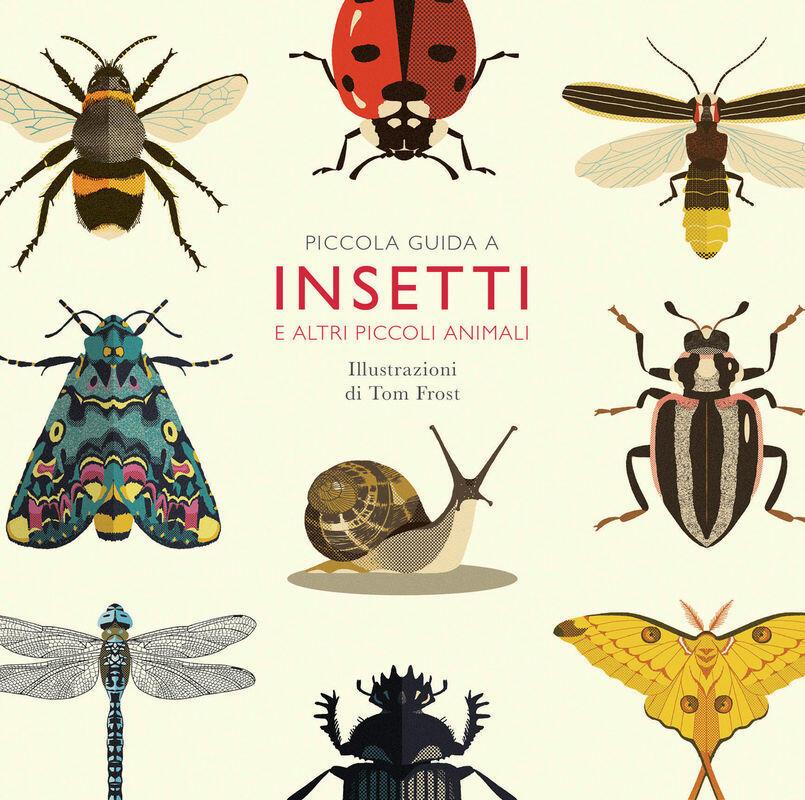 Piccola guida a insetti e altri piccoli animali