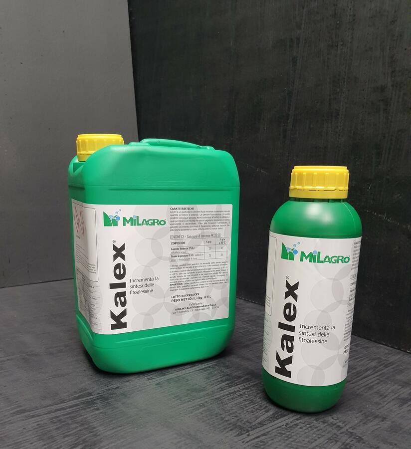 Concime Kalex 1 - 6 L