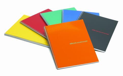 Quaderno spiralato STANDARD 100 pagine senza fori