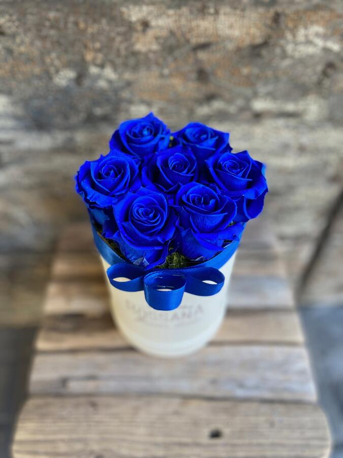 FLOWER BOX T7 Rossana Collection BLU