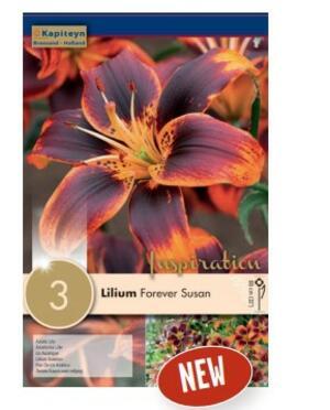 Bulbi di Lilium Forever confezione da 3 pz