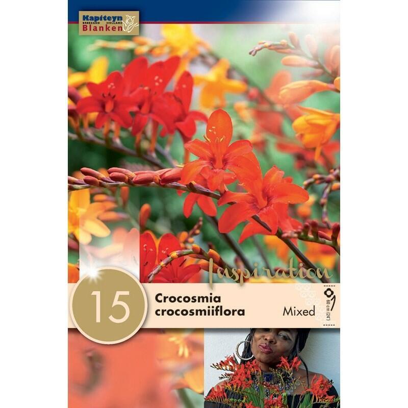 Bulbi di Crocosmia Mixed confezione da15 pz
