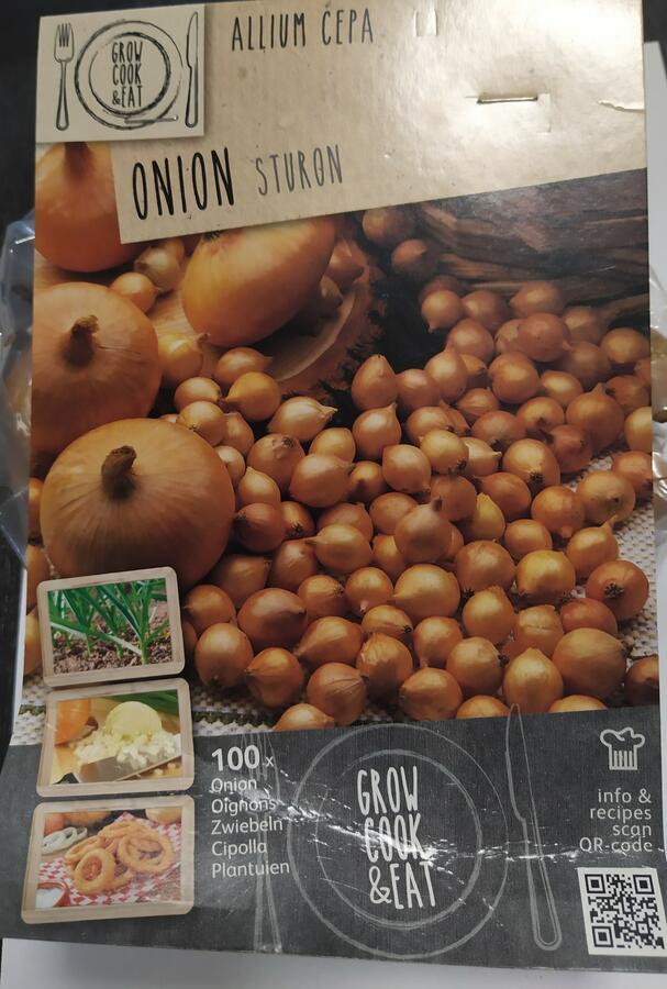Bulbi di Cipolla Gialla confezione da 100 pz