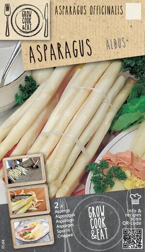 Bulbi di Asparagus Albus confezione 2pz
