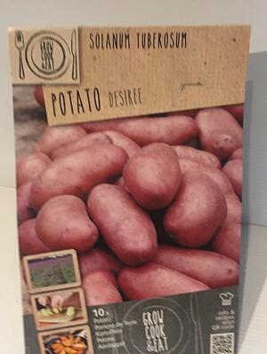 Bulbi di Patate Desirè confezione 10 pz