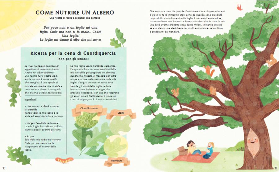 La vita segreta degli alberi