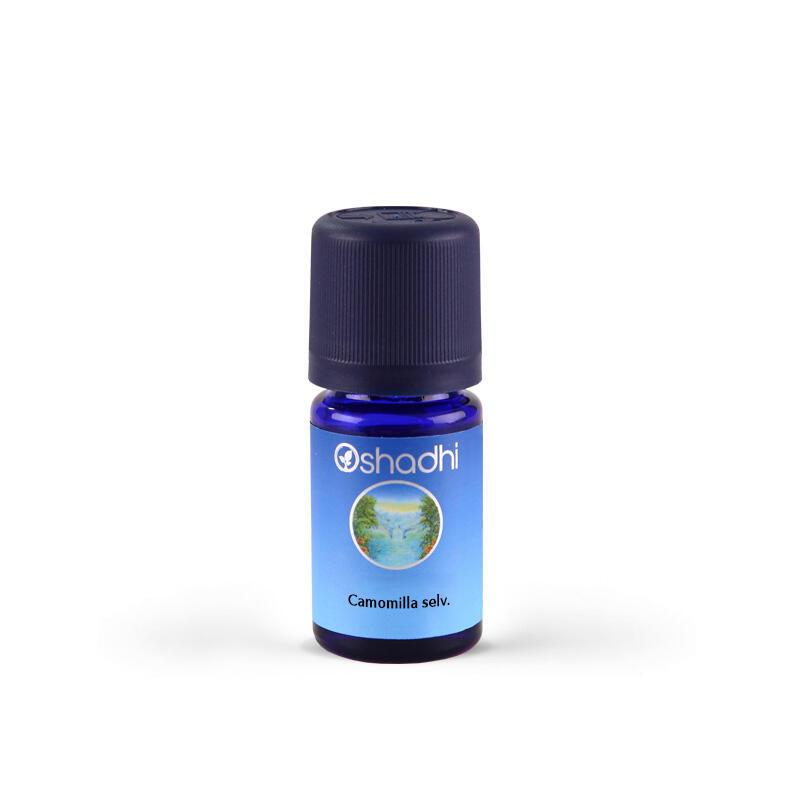 Oshadhi - Camomilla selvatica Marocco (Ormensis) olio essenziale