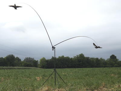 Giostra per colombacci con due stampi aste in fibra di vetro telescopiche e variatore di velocità
