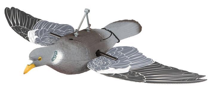Colombaccio in volo ad ali girevoli
