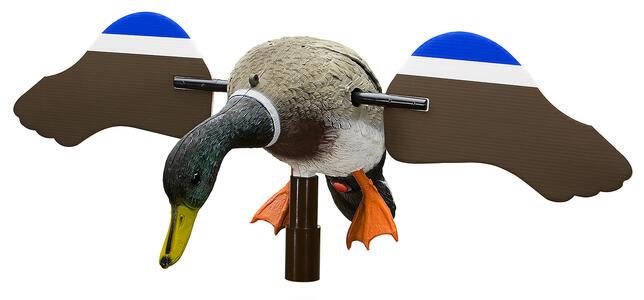 Germano maschio/femmina ad ali girevoli dimensioni corpo cm.42