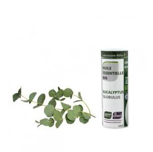 Eucalipto globulus  bio olio essenziale