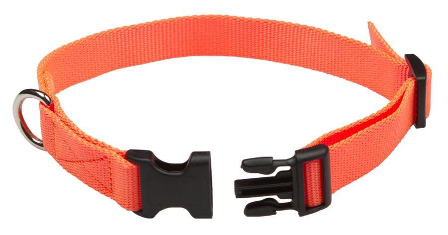 Collare regolabile per campani in fettuccia di morbido nylon 100% mm.20 colore arancio fluo
