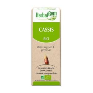 Herbalgem - Ribes nero Gemmoderivato concentrato bio