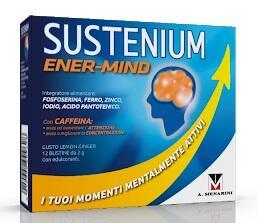 SUSTENIUM MEMO Energy Break