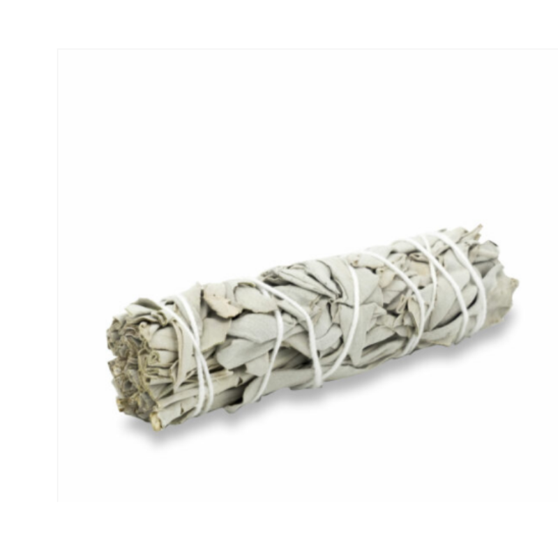 Salvia bianca Smudge stick