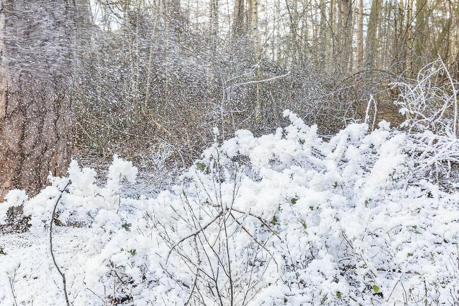 BeamZ - MACCHINA PER LA NEVE AD ALTO VOLUME SNOW5000