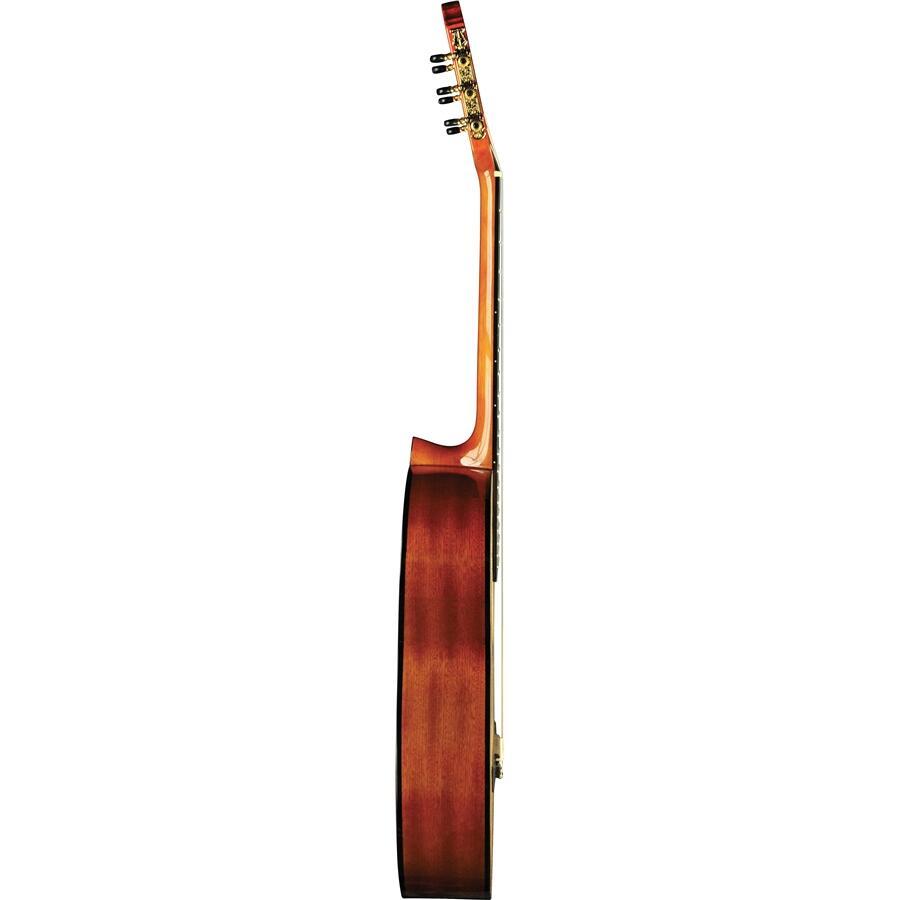 EKO GUITARS - VIBRA 100 NATURAL