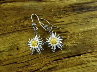 Thistle of mountain, earrings in Silver