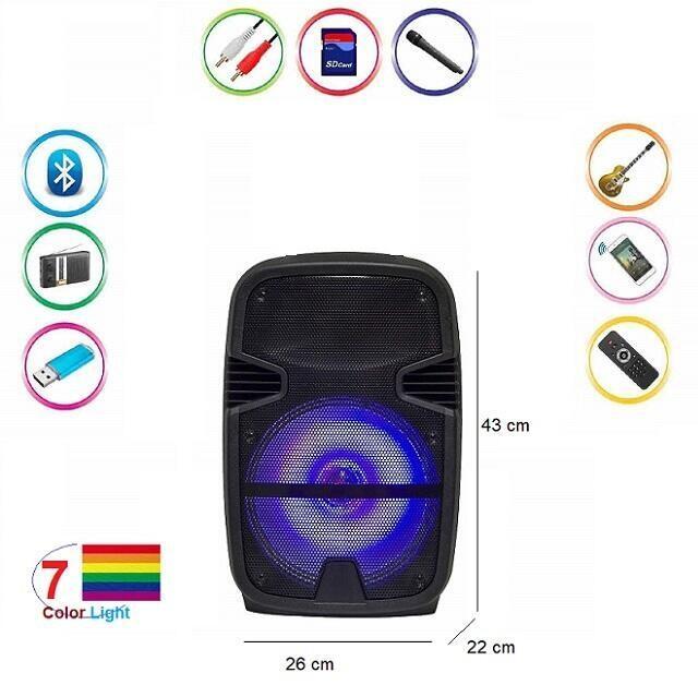 Cassa bluetooth Karaoke portatile 100w ingresso microfono AUX USB TF  MK-A11