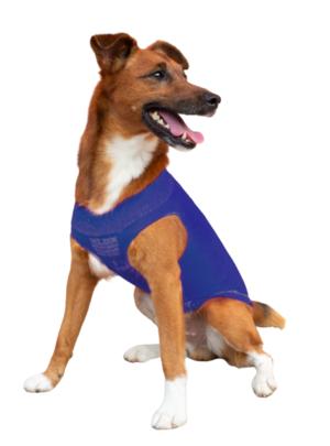 Easydog Blu S 24-30 cm Maglioncino Termico Impermeabile Per Cani Cappottino