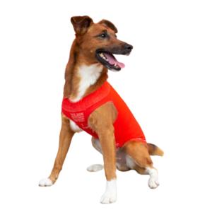 Easydog Rosso L 39-46 cm Maglioncino Termico Impermeabile Per Cani Cappottino