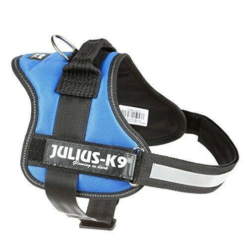 Julius k9 IDC Blu Taglia 1 L 63-85 cm Peso 23-30 Kg Pettorina Per Cani Celeste