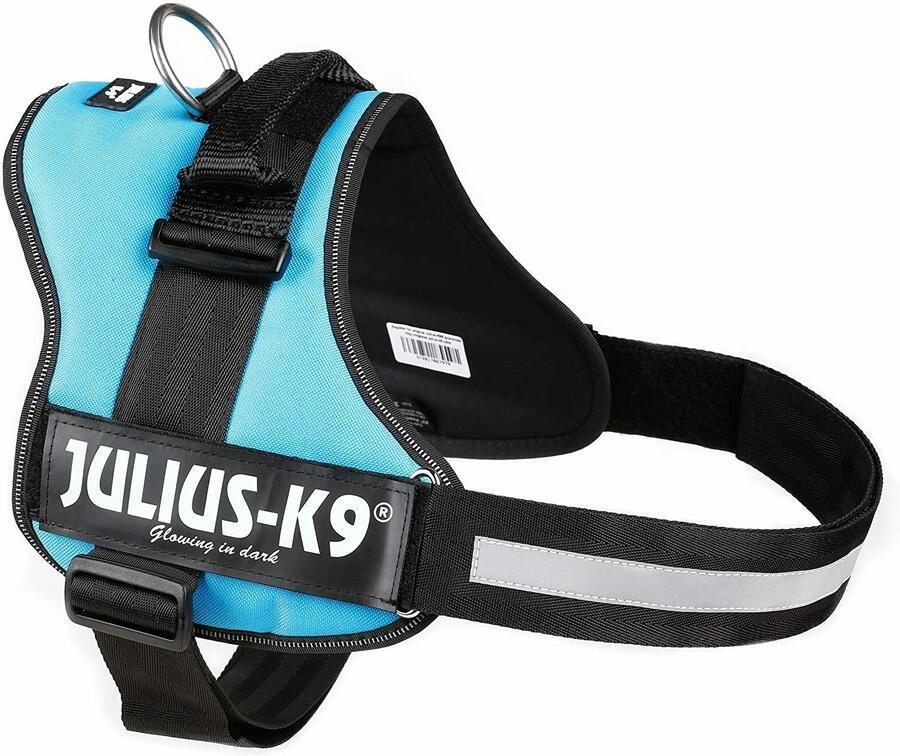 Julius k9 IDC Azzurra Taglia 2XL 71-96 cm Peso 28-40 Kg Pettorina Per Cani Celeste