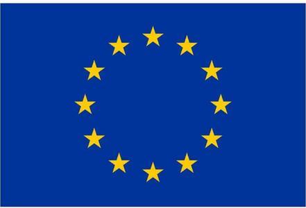 Bandiera Europa cm. 150x100