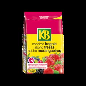 Concime Fragole 800 gr
