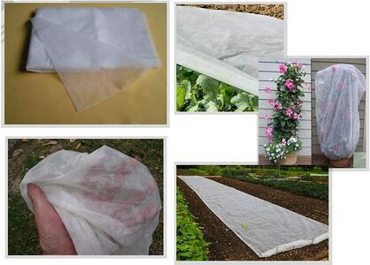 Telo di protezione per ortaggi in rotolo in tnt papillon tessuto non tessuto 1,6x250mt