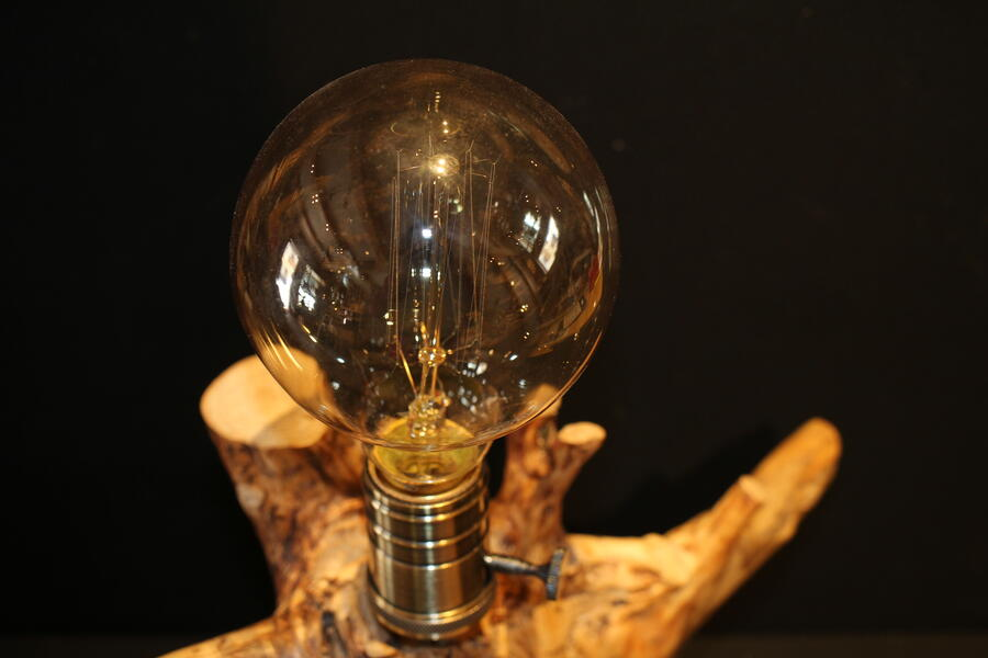 Lampada radice