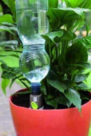 Aquaholiday Sistema di irrigazione per piante in vaso