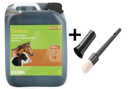 Catrame Vegetale TarPaste Tanica 5 kg + omaggio pennello per zoccoli