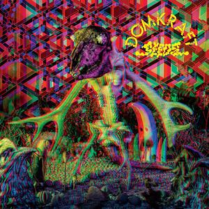 DOMKRAFT  - SEEDS - LP (Magnetic Eye Records)
