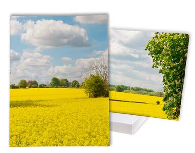 Fotoquadri con cornice stampata a vista