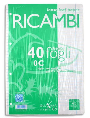 RICAMBI A4 40 FOGLI 80 GR RIG. PIGNA