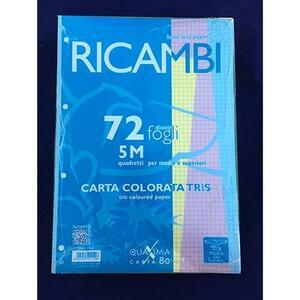 RICAMBI COLORATI A4 72 FOGLI MULTICOLOR 80 GR 5MM PIGNA