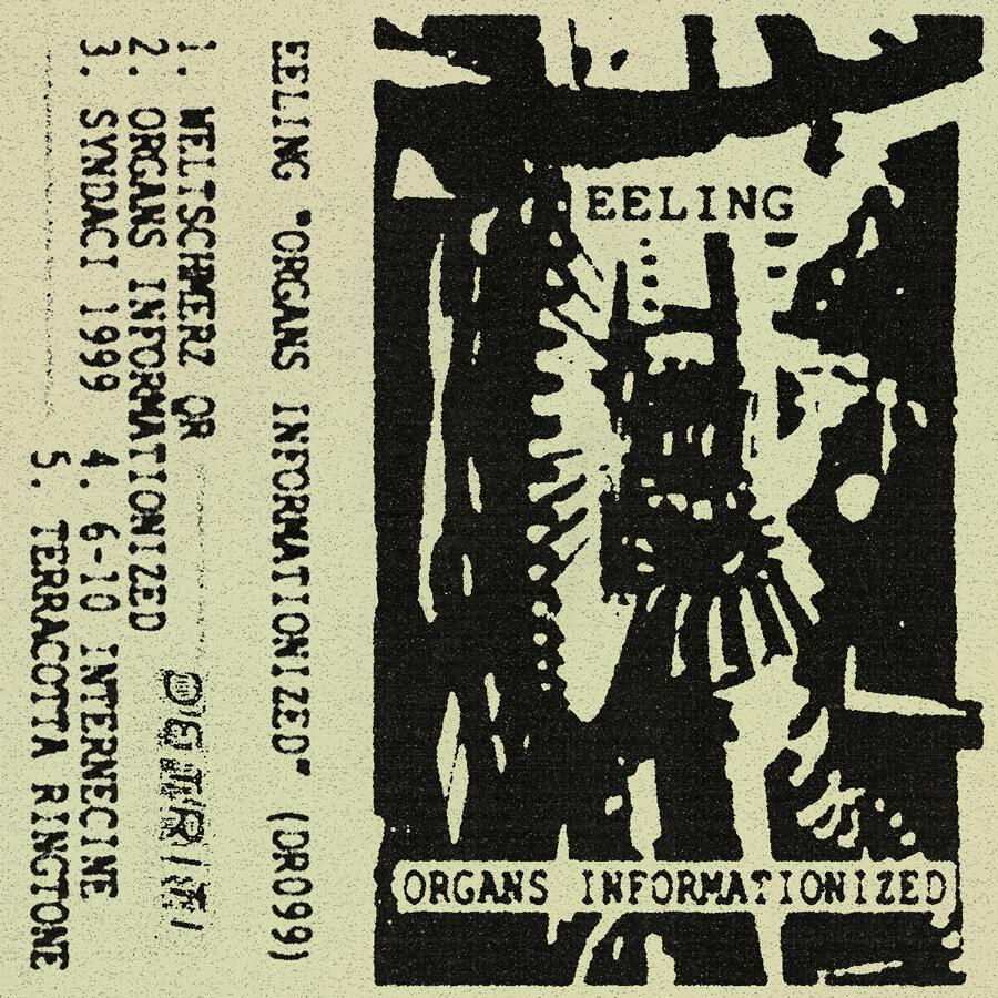 Eeling - Organs Informationized