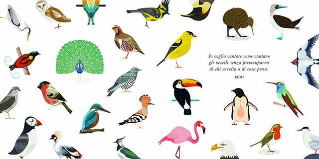 Piccola guida agli Uccelli